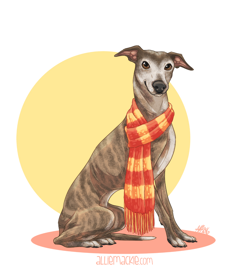 Cricket the Sighthound - Pet Portrait
